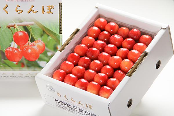 佐藤錦 秀品 手詰め 約500g