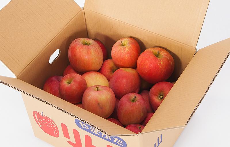 山形県産 ご家庭用りんご 約5kg (品種はお任せになります。)