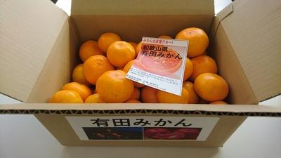 【直販所】地域ブランド「有田みかん」10㎏箱◆好評販売中◆