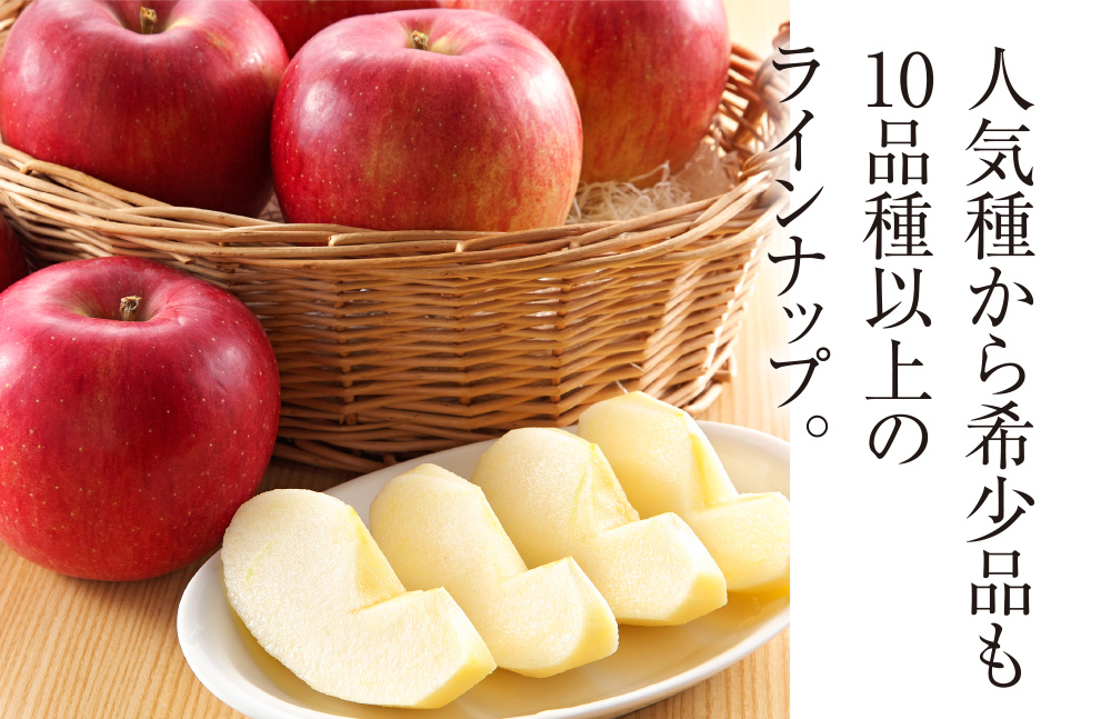 人気種から希少品も10品種以上のラインナップ。