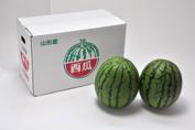 【送料無料】山形県産小玉すいか 約2kg×2玉入