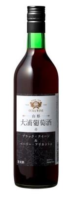 大浦葡萄酒 赤 辛口 720ml