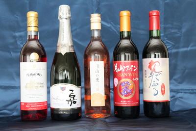 山形ワイン GI認定記念緊急企画 アソートワイン5本セット 【プレゼント付】