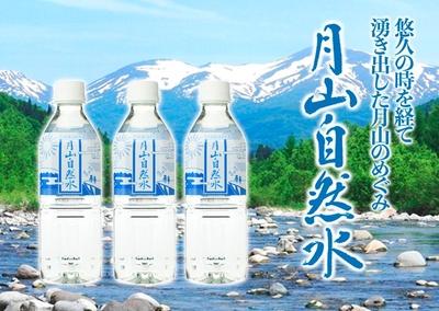 月山自然水 500mlペットボトル×24本(1箱)