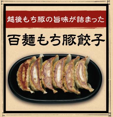 百麺もち豚餃子(10個入り)