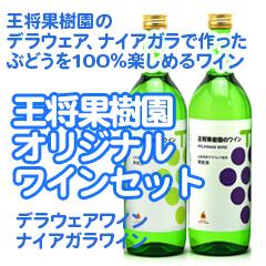 【GO-10】王将果樹園オリジナルワインセット(ナイヤガラワイン&デラウェアワイン)