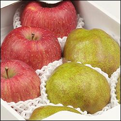 りんご「サンふじ」&洋梨「ラ・フランス」(計 約3kg)