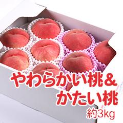 M-8 やわらかい桃&かたい桃 約3kg
