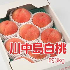 M-4 川中島白桃 約3kg