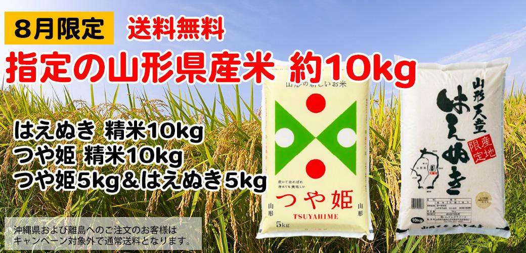 山形県産米10kg 送料無料でお届けします