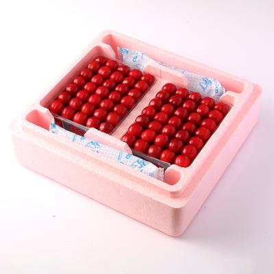 【PS-8】佐藤錦・手詰 約1.2kg(約600g×2)保冷容器