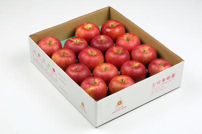 NR-4 りんご シナノスイート 約5kg