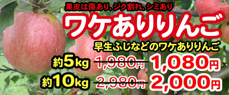 ワケありりんご 5kg 1,080円