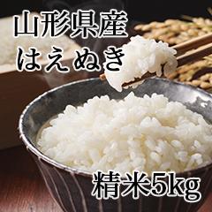 【KH-5】山形県産はえぬき 精米5kg