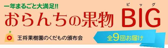 王将頒布会 おらんちの果物ビッグ 9回届いて38,000円