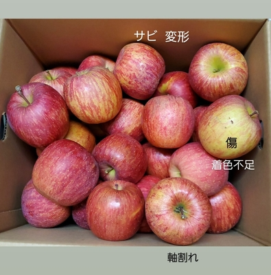 ◆【ご自宅向け】サンふじ 5kgバラ箱