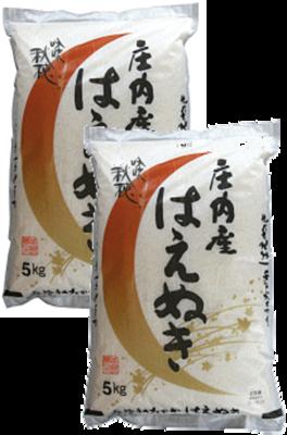 はえぬき10kg(5kg×2)