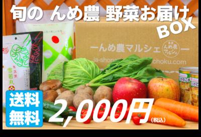 旬のんめ農 野菜お届けBOX