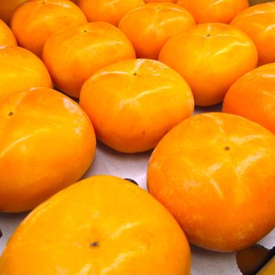 庄内柿【3.5kg 18~20玉入】