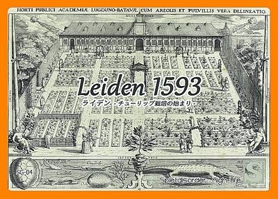 ライデン1593