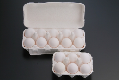 地養卵の生たまご 白玉10個入り1パック