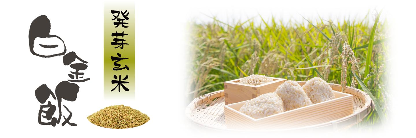 発芽玄米プラチナメシ メイン