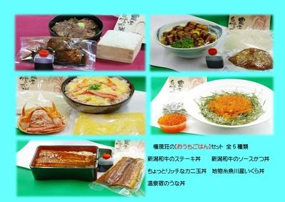 【G.Wキャンペーン対象】温泉宿の丼ものセット5人前 4種類から組み合わせ自由♪