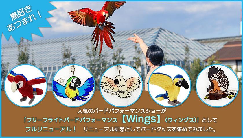 フリーフライトバードパフォーマンス【Wings】