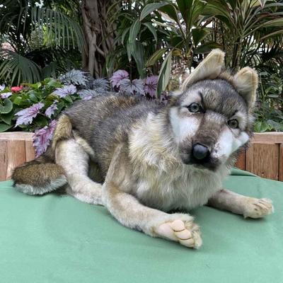 HANSA オオカミ WOLF LAYING
