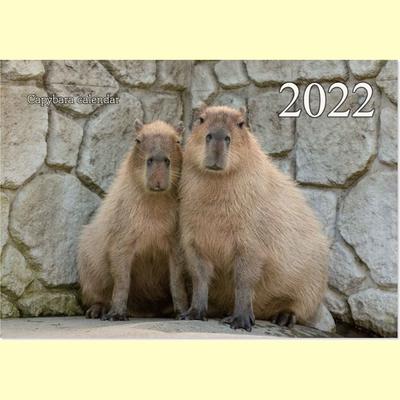 2022カピバラカレンダー 写真撮影 渡辺克仁