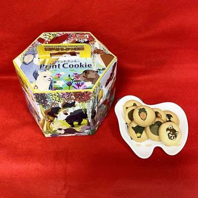 六角箱プリントクッキー30個入 ハシビロコウ レッサーパンダ ラクダ クロクマ アザラシ ルリコンゴウインコ ナマケモノ ピューマ