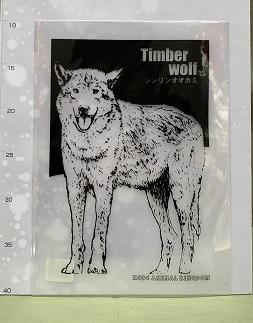 オリジナルクリアファイル シンリンオオカミ