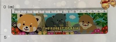 定規 アジアの森
