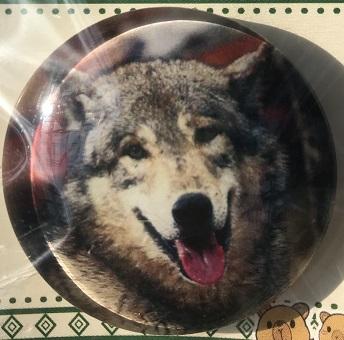 ガラスマグネット シンリンオオカミ