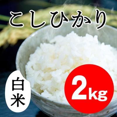 こしひかり 白米【2kg】
