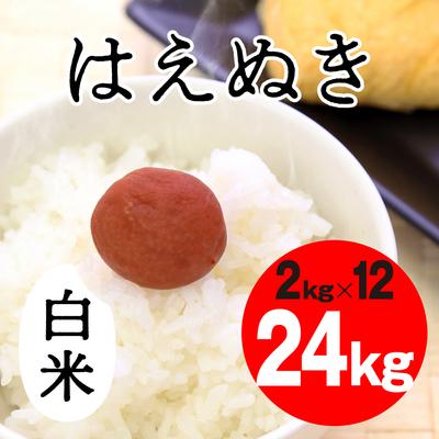 はえぬき 白米【24kg】