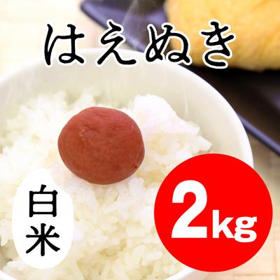 はえぬき 白米【2kg】