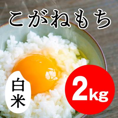 こがねもち 白米【2kg】