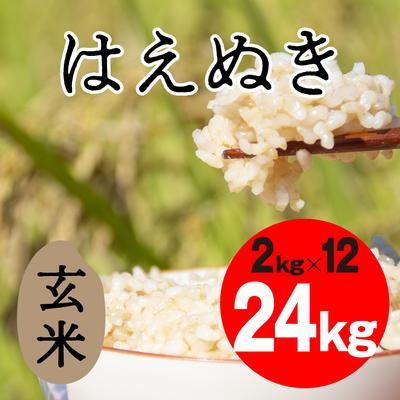 はえぬき 玄米【24kg】