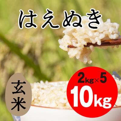 はえぬき 玄米【10kg】