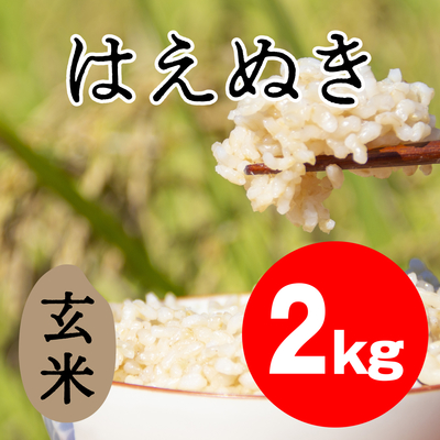 はえぬき 玄米【2kg】