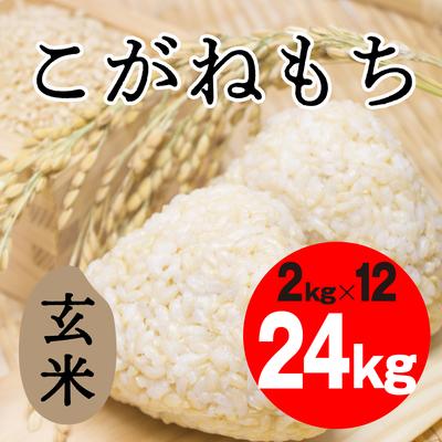 こがねもち 玄米【24kg】
