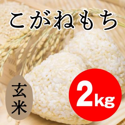 こがねもち 玄米【2kg】