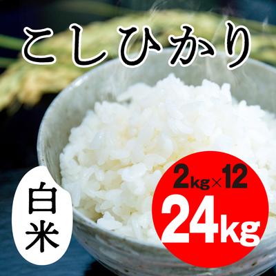 こしひかり 白米【24kg】