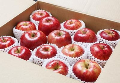 旬のりんご定期便