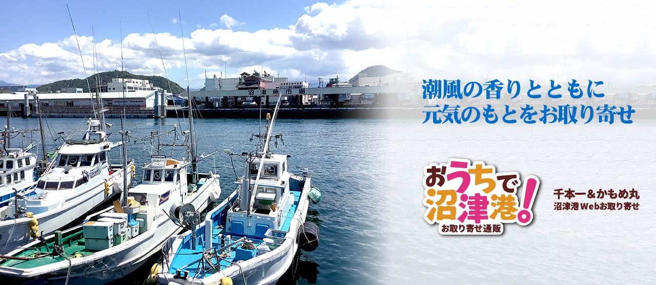 お店の正面に魚市場と漁港