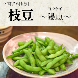 枝豆500g(全国送料無料)