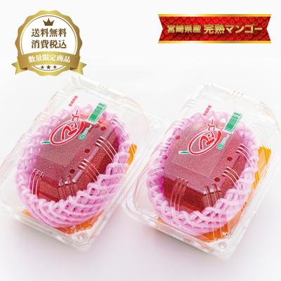 みやざき完熟マンゴー【2パック】