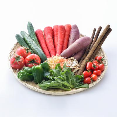 みやざき野菜詰合セット<送料・消費税込>