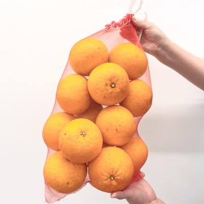 甘夏みかん 5キロ